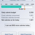Lose It! daily calorie budget
